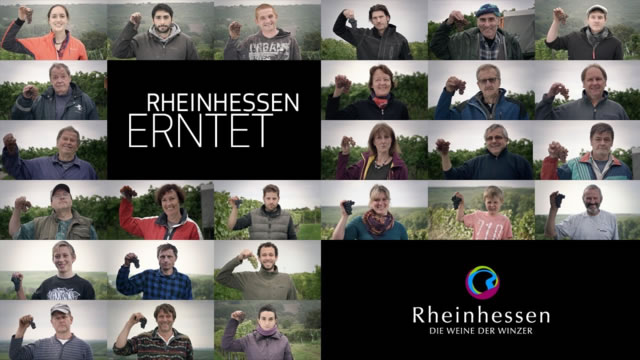 2018oogstinrheinhessen1