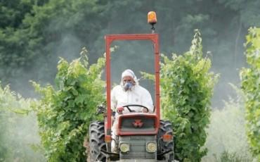 Pesticide in wijngaarden